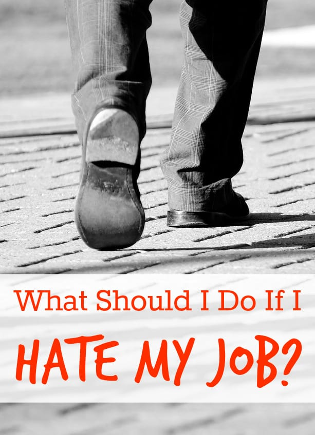 What Should I Do With My Soil: What Should I Do If I Hate My Job?